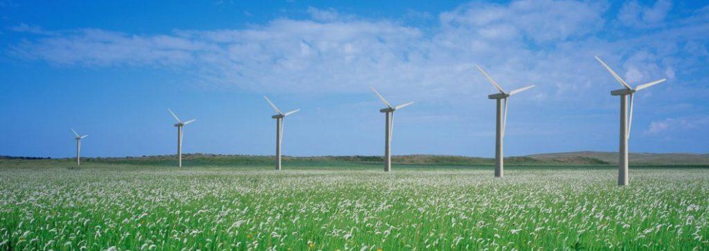 Il procurement sostenibile